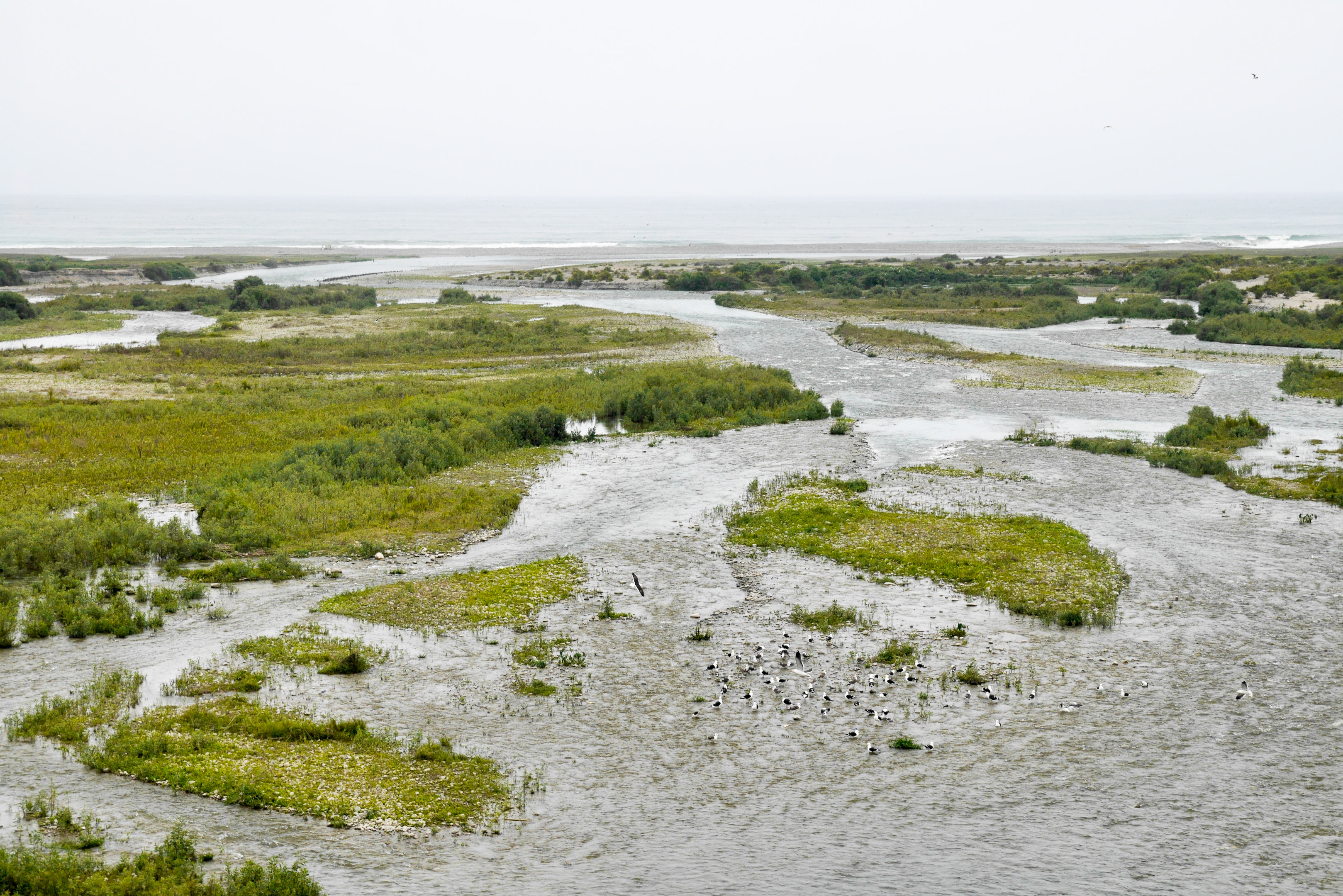 Rivière sur côte désertique