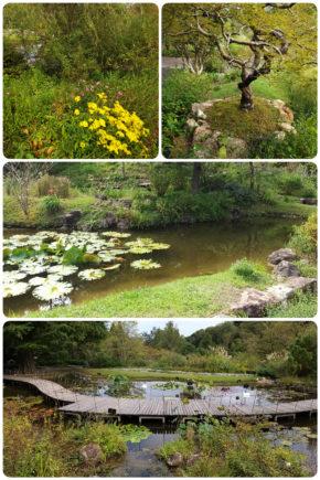 Kochi – Jardin botanique