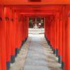 Sanctuaire Shintoïsme en vidéo