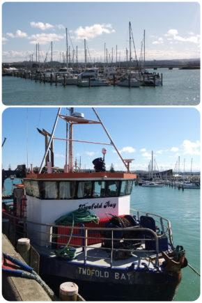 Napier – port de plaisance