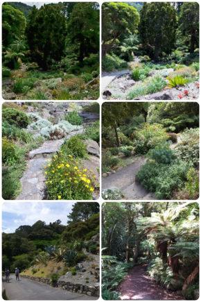 Wellington – Jardin botanique